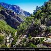 Middle East - Turkey - Türkiye - Antalya Province - Göynük kanyonu in Beydaglari Olimpos Sahil Milli Parki - Göynük Canyon in eydaglari Olimpos Sahil Milli National Park