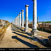 Middle East - Turkey - Türkiye - Antalya Province - Perga - Perge - Ancient Greek city in Anatolia, once capital of Pamphylia Secunda - Large site of ancient ruins with agora, stadium & temples