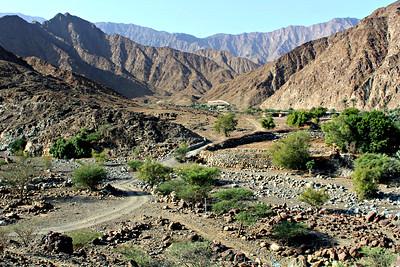 Wadi Hayl Oasis and Farm