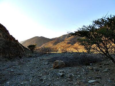 Wadi Wahala
