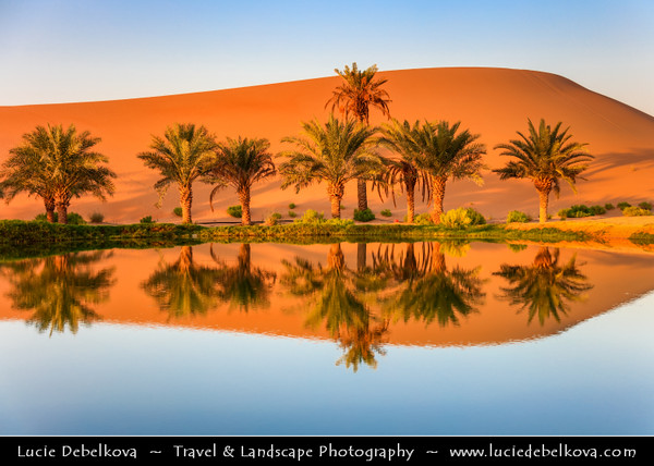 Middle East - GCC - United Arab Emirates - UAE - Emirate of Abu Dhabi - Al Ain desert area with endless sea of sand dunes - Oases with Palm trees reflected in a desert lake