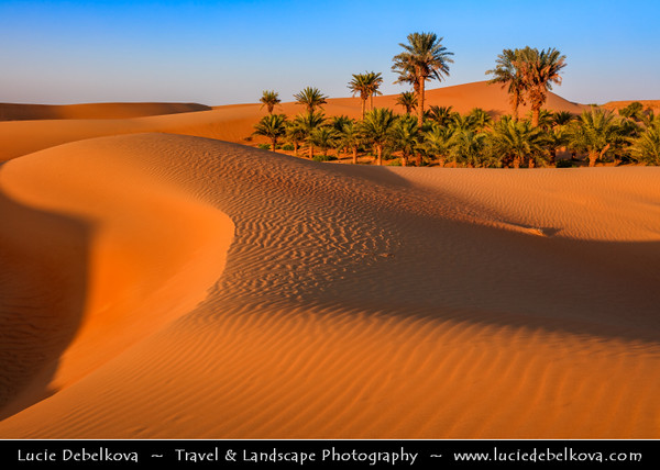 Middle East - GCC - United Arab Emirates - UAE - Emirate of Abu Dhabi - Al Ain desert area with endless sea of sand dunes - Oases with Palm trees