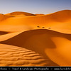 Middle East - GCC - United Arab Emirates - UAE - Abu Dhabi Emirate - Empty Quarter Desert - Rub Al Khali - Arabian Desert - Spectacular sea of sand dunes