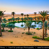 Middle East - GCC - United Arab Emirates - UAE - Emirate of Abu Dhabi - Al Ain desert area with endless sea of sand dunes - Oases with Palm trees around small lake