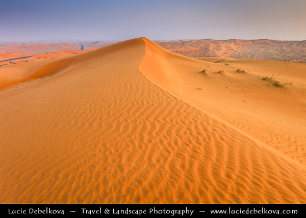 Middle East - GCC - United Arab Emirates - UAE - Emirate of Ras Al Khaimah - RAK - Sea of sand dunes in vast desert landscape during Sunrise