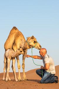 Desert Vet Cover Photo