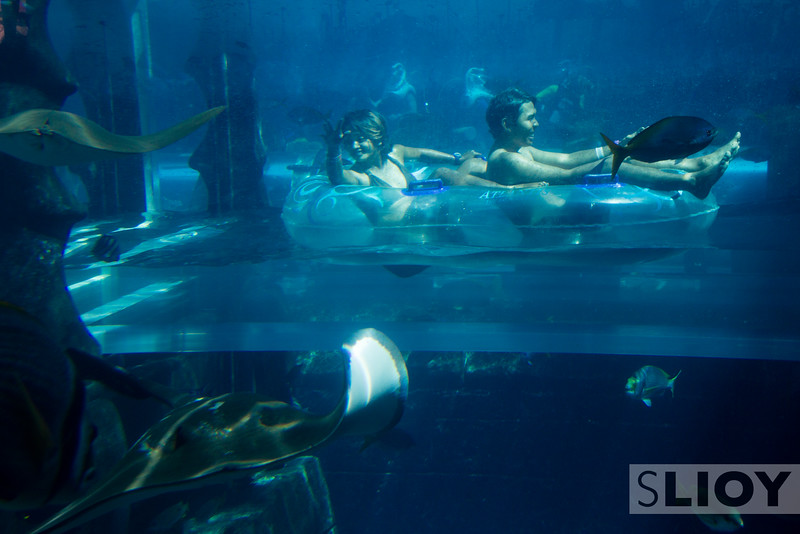 In the depths of the Aquaventure waterpark in Dubai.