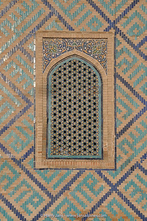 detail tiles at Sher-Dor Madrasah