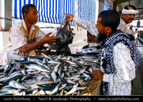 Middle East - Yemen - Hadramaut Governorate - Al Mukalla - المكلا - Al Mukhala - Al Mukala - Main sea port in the southern part of Arabia on the Gulf of Aden -  Fish Market - Local man selling fresh catch