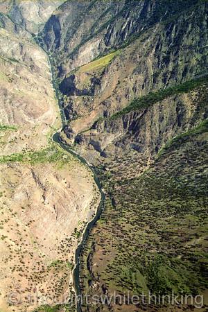 181 MF2005 Day7 June 25 MF just North of Big Creek
