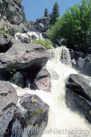 125 MF2005 Day5 June 23 Waterfall Creek