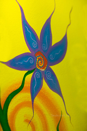 Flower painted on wall  9914