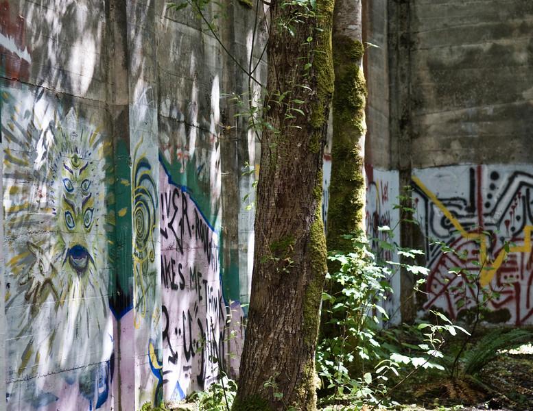 Mill Pond 2007 (56)-2