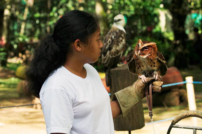 philippine-eagle-center