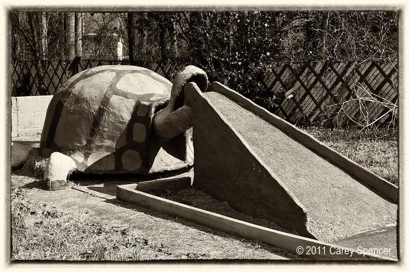 mini golf turtle