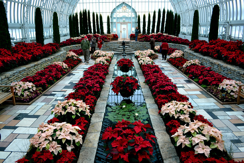 Christmas flower show at Como Park Conservatory in St. Paul, MN