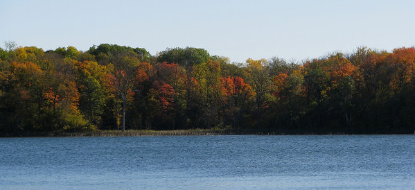 Maples turning color across the lake.