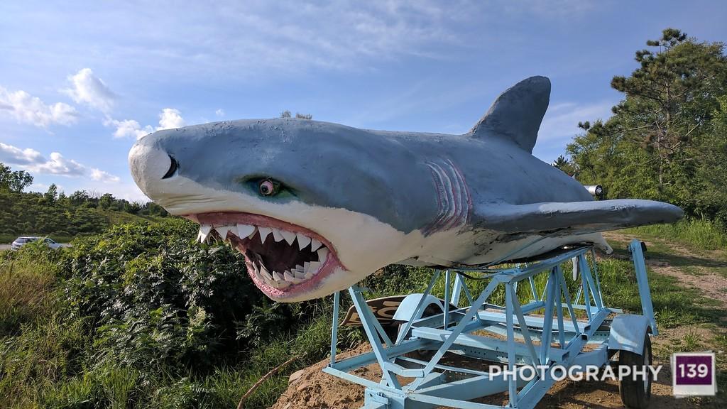Hot Sam's Foto Park