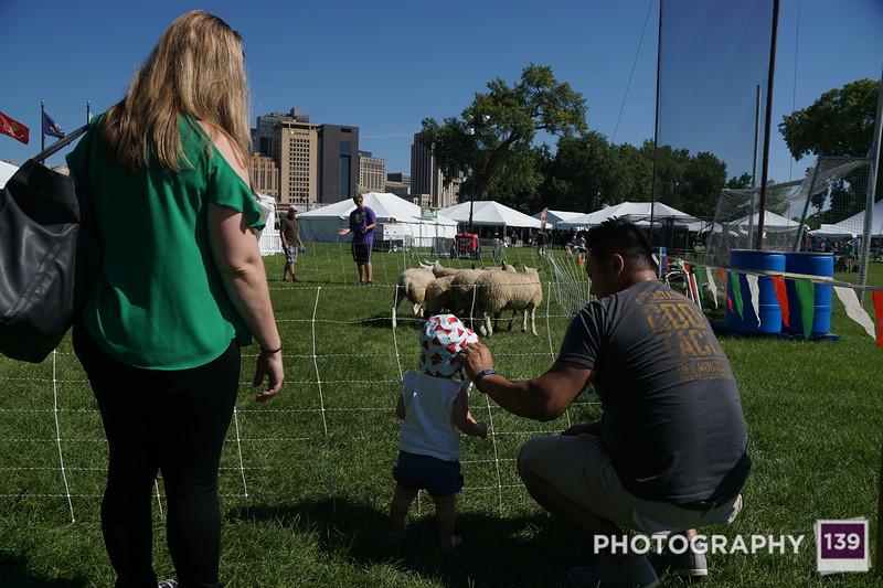 Saint Paul - Irish Fair