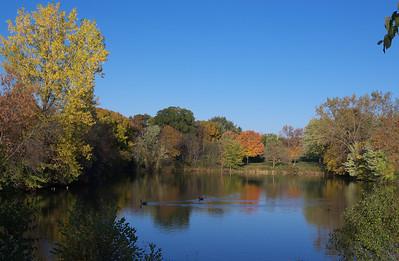 Maplewood Hts Oct 2013