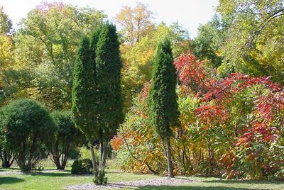 Minnesota Arboretum