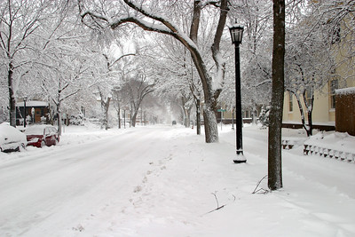 Our street after a snowstorm.