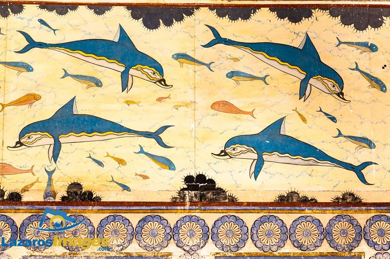 Minoan Dolphin