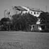 mirandola_italy-0078