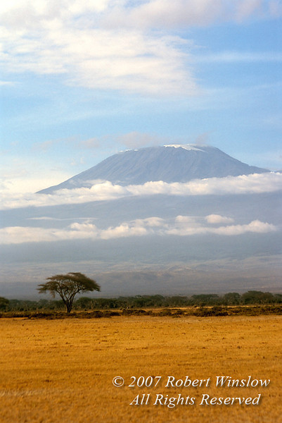 Mount Kilimanjaro, Amboseli National Park, Kenya, Africa