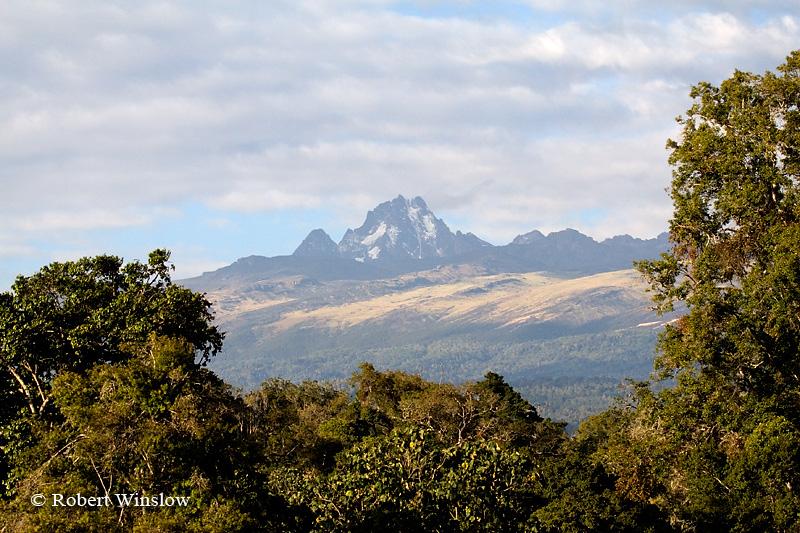 Mount Kenya from Mountain Lodge, Mount Kenya National Park, Kenya, Africa