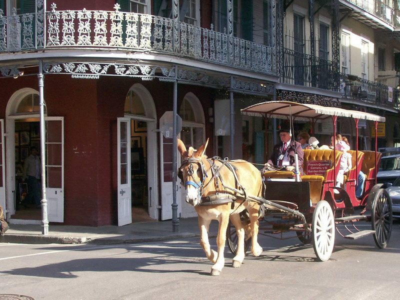 French Quater, New Orleans, LA