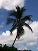 Bahie Honda State Park, near Key West, FL