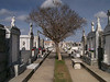 """Cities of the Dead""  Cemetery, New Orleans, LA"