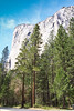 El Capitan is a 3,000-foot vertical rock formation in Yosemite National Park, located on the north side of Yosemite Valley, near its western end. The granite monolith is one of the world's favorite challenges for rock climbers