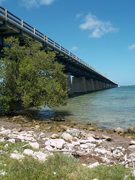 The old Seven Mile Bridge. Takne from Pidgeon Key, near Key West, FLorida