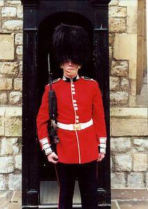 brit-tilt guard