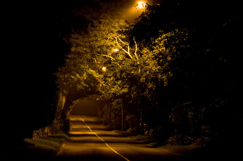 Title: Cue the Headless Horseman<br /> Date: August 2009<br /> Cape Cod MA - One of the many dimly lit roads on the Cape.  In one of the small villages in Dennis.