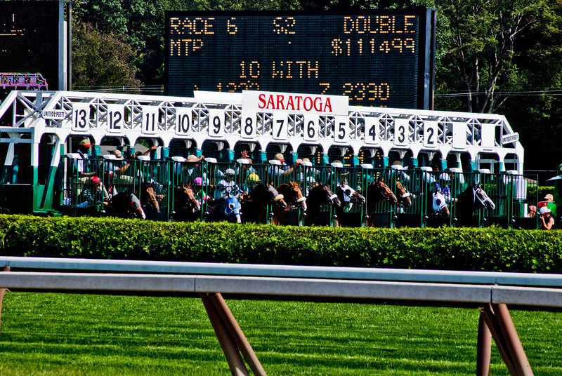 Title: And They're Off!<br /> Date: August 2008<br /> Saratoga Springs NY - The very beginning of a race at the Travers Cup.