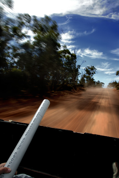 Driving in the back of a ute.  Narrogin, Western Australia.