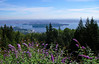 Vancouver, British Columbia and Burrard Inlet from North Vancouver