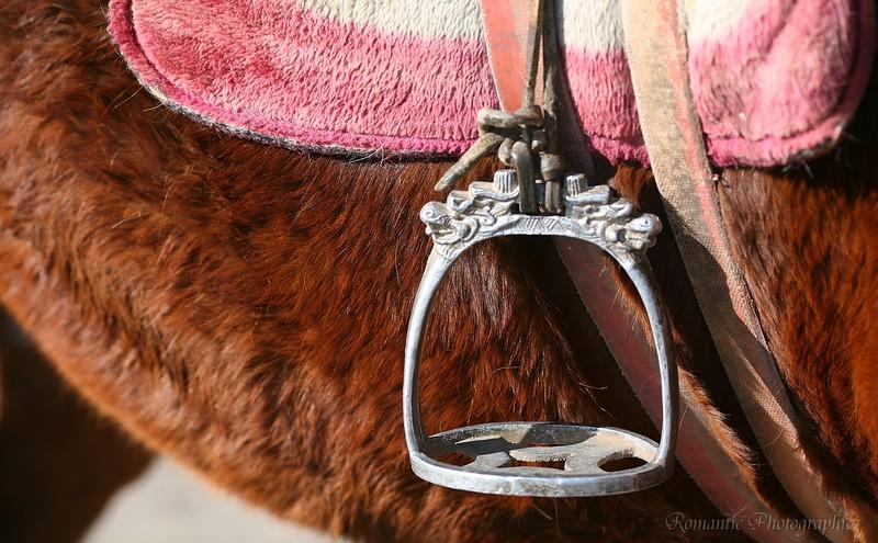 Saddle stirrup on a pony in Lijang, China.