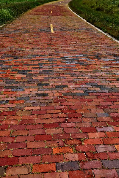 Old Route 66, paved with bricks, near Auburn, IL.