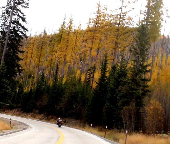 Jim Carroll Riding WA20 on Sherman Pass on 10/18/2012