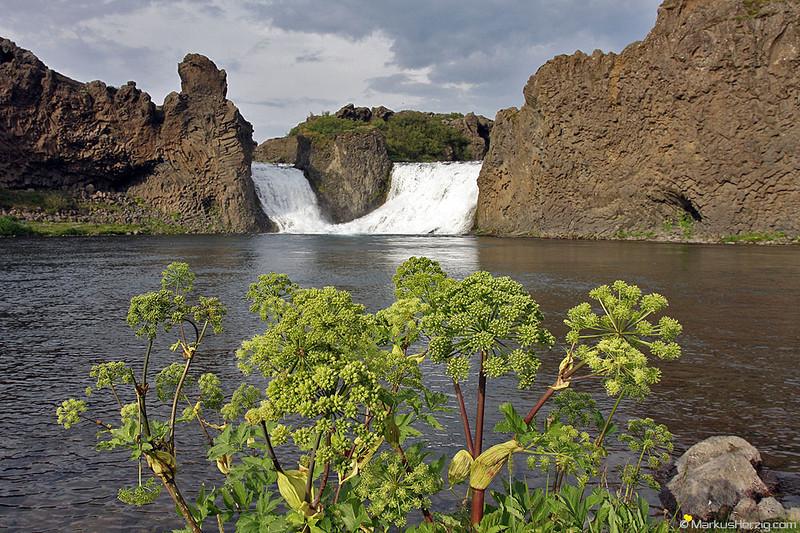 Hjalparfoss @ Thjorsardalur Iceland 19Jul09