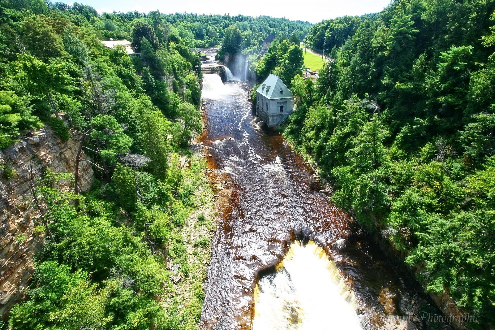 Tannin rich river in upstate New York [1600 x 1068] [OC]