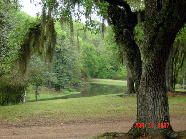 Grounds at Longwood