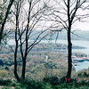 View From Riding The Duck - Award Trip from Allred's to Timeshare in Branson, MO  4-11 to 4-18, 1998