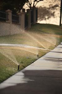 Sprinkler art - Early morning Broadbeach, 11-12-09