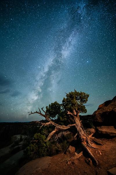 Made from 27 light frames by Starry Landscape Stacker 1.8.0.  Algorithm: Min Horizon Noise