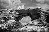 Wilson Arch is one of the most spectacular in Utah and is located right beside the highway; best viewed in the larger sizes